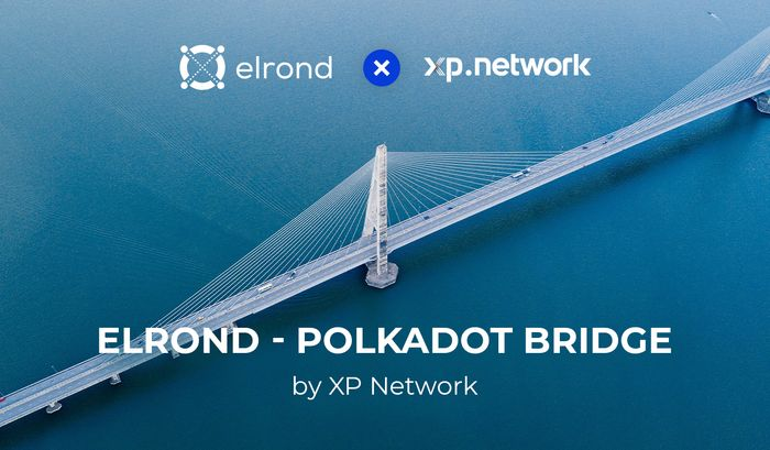 XP Network To Build The First Elrond <> Polkadot Bridge For Multi-Chain NFT dApps Deployment